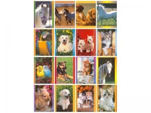 60 Karten ohne Text mit ca. 40 Tiermotiven